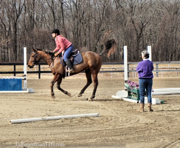 stride after jump horse