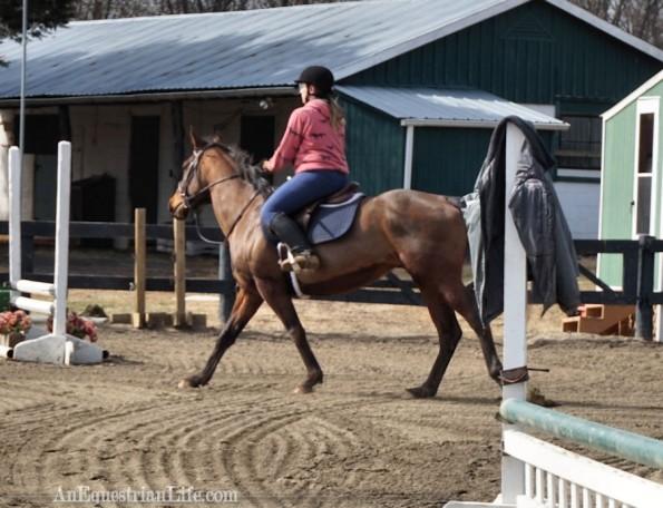 horse lead change