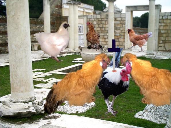 """""""Et tu, Fluffers?"""""""