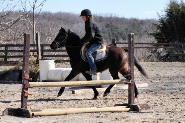 pony strut