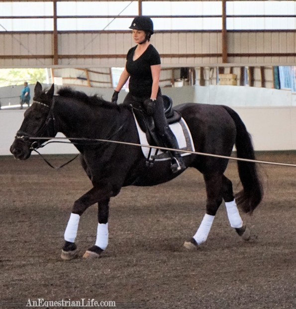 Vertical position at a canter.