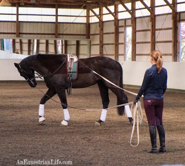 double lunging