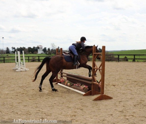 horsejump2