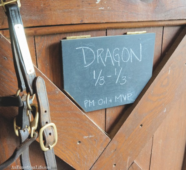 "Halter plate said ""Land Dragon"", which is one of the coolest names ever!"
