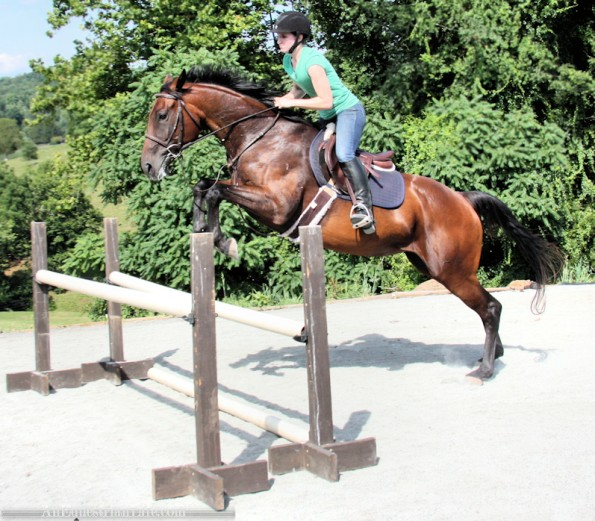 Berry has an obsession with the long spot, but otherwise, the right hands prove you are capable, horse! You can't fool me!