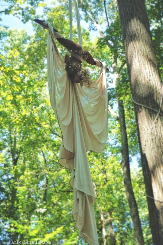 Aerial Silk Fantasy
