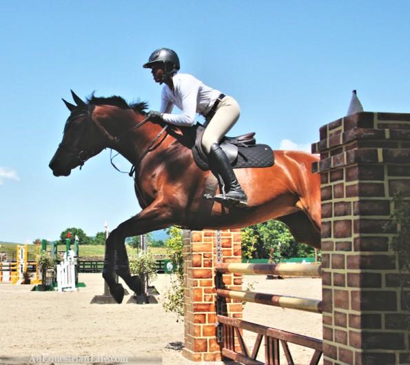 junior rider