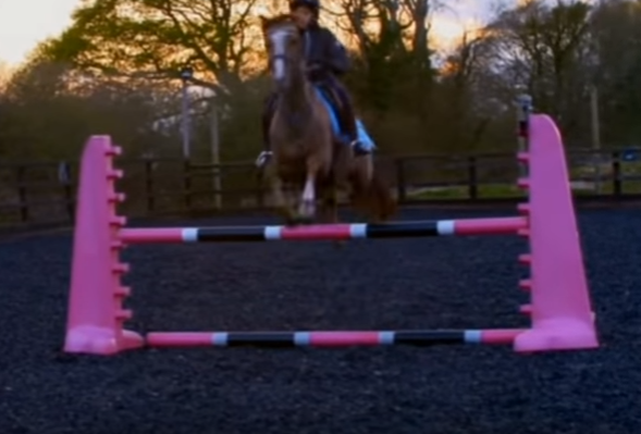 Katie's son Junior jumping.