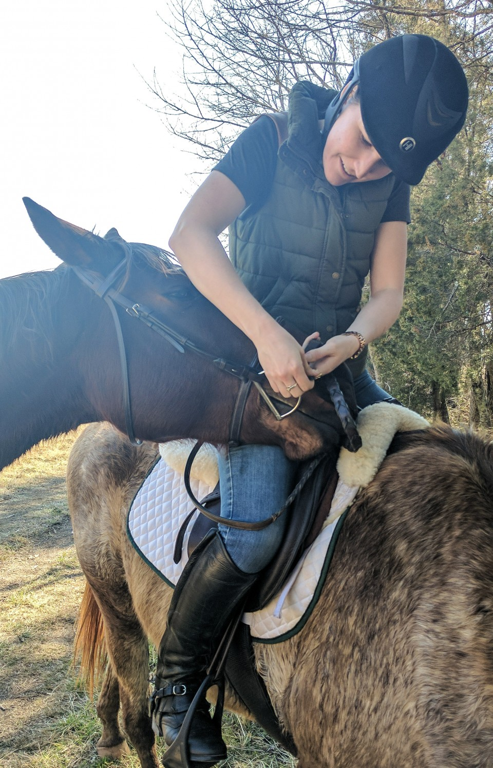 fixing reins