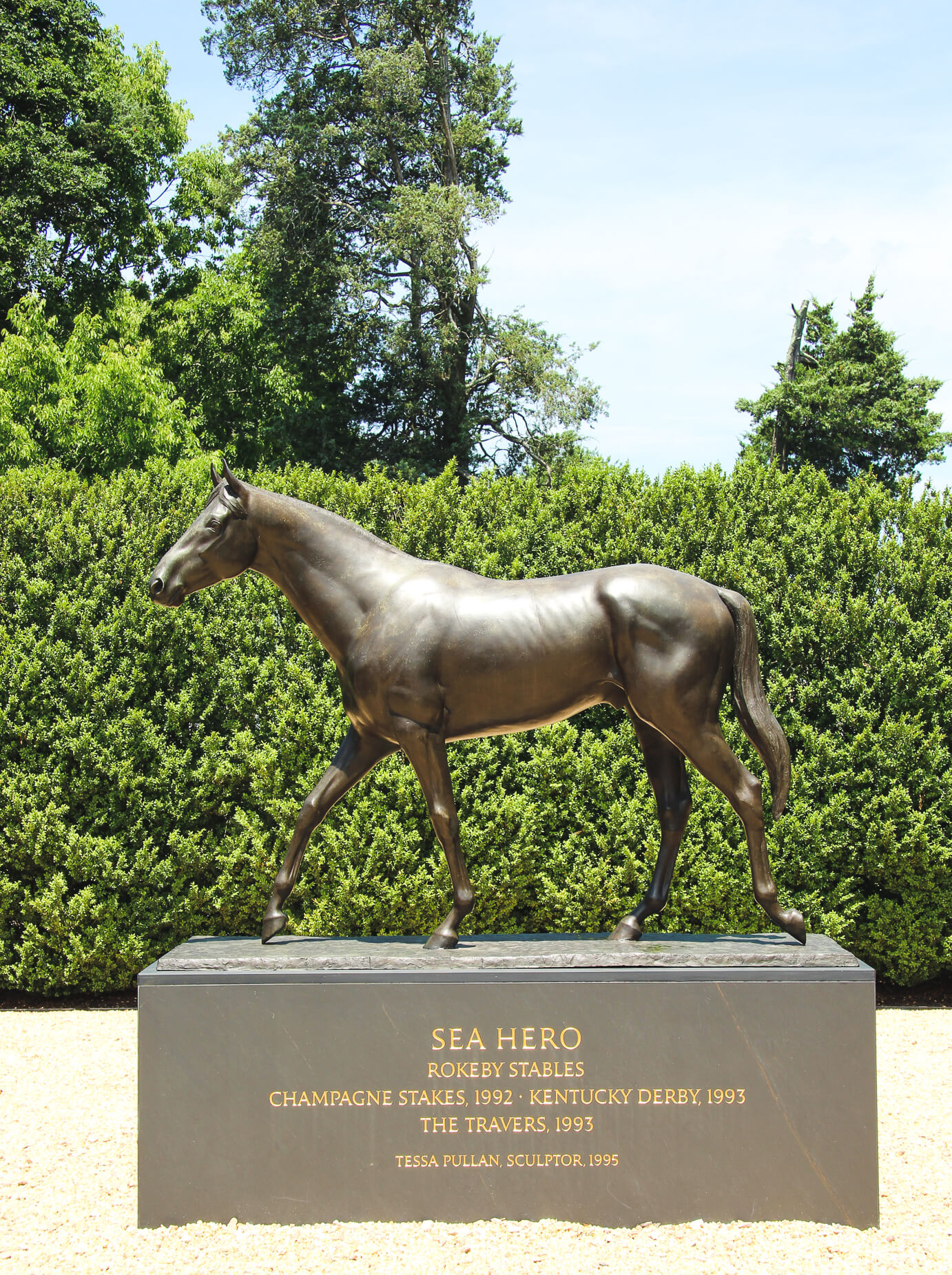 thoroughbred stallion sea hero