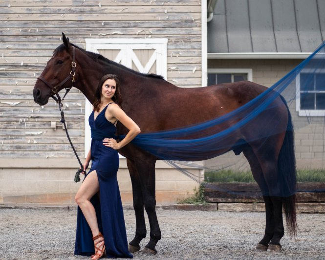 dramatic tulle horse